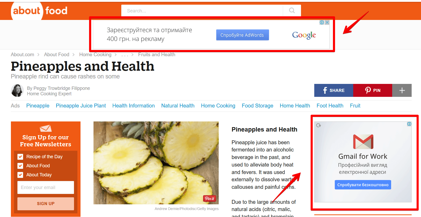Pineapples-and-Health-Mozilla-Firefox-2015-08-20-15.28.42 Google AdWords