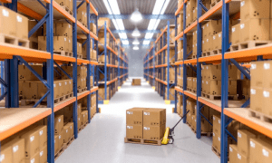 Using-a-Fulfillment-Warehouse-for-Shipping-A-Beginners-Guide1546940267875.jpg