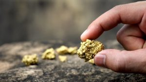 holding-gold-nugget-1